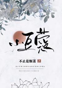 官制风俗大杂烩、古言甜宠小说推荐