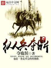非常出彩的三国类历史文推荐《纵兵夺鼎》