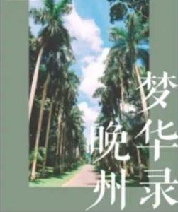 青梅竹马的校园甜文推荐《晚州梦华录》
